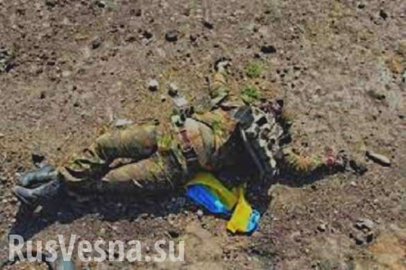 Горловка. Сколько трупов карателей ВСУ вывезли с Донбасса | Русская весна