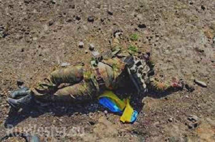 Горловка. Сколько трупов карателей ВСУ вывезли с Донбасса