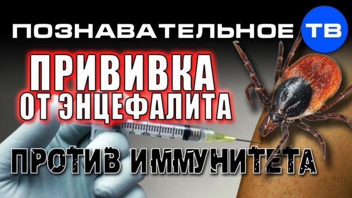 Прививка от энцефалита направлена против иммунитета ребёнка