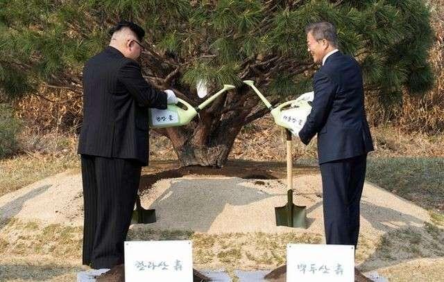 Кореи договариваются без США, а пиндосам это ужасно не нравится