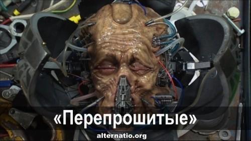 Как на Украине «перепрошивают» психику и мировоззрение человека