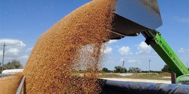 Россия направит излишки урожая зерна бедным странам не просто так