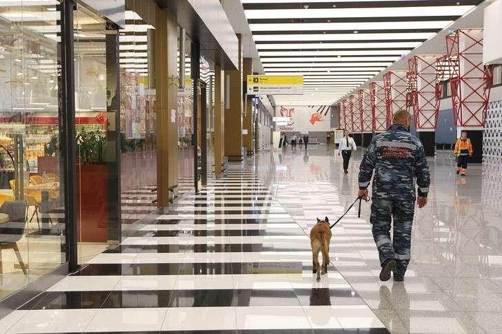 Ваэропорту Шереметьево открылся терминал В
