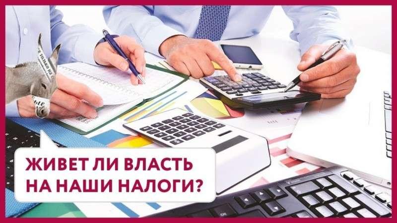 Российская власть живёт на наши налоги! Так ли это на самом деле?