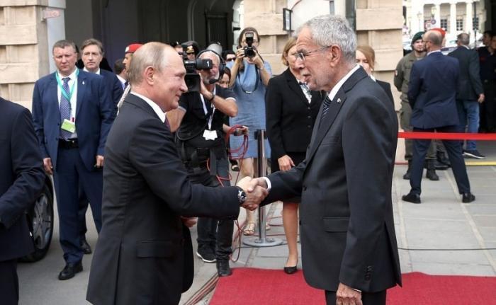 Владимир Путин проводит переговоры с президентом Австрии Александром Ван дер Белленом