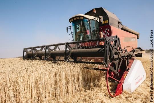 Украинская засуха и проблемы в России поднимают цену зерна на мировом рынке
