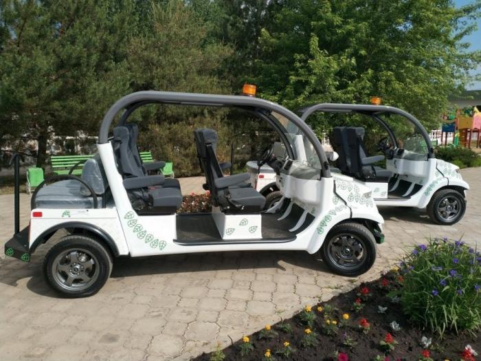 В Ростове для жителей и гостей города появится новая услуга эко-такси