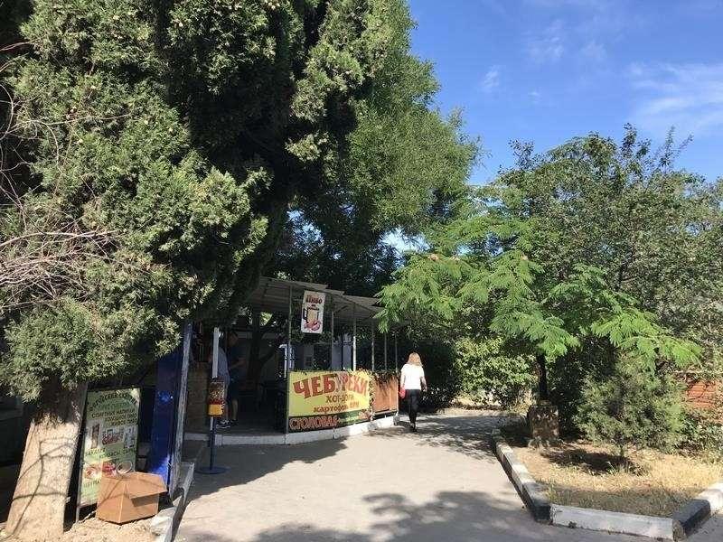 Форос: красивая природа и дикий социум с мигрантами
