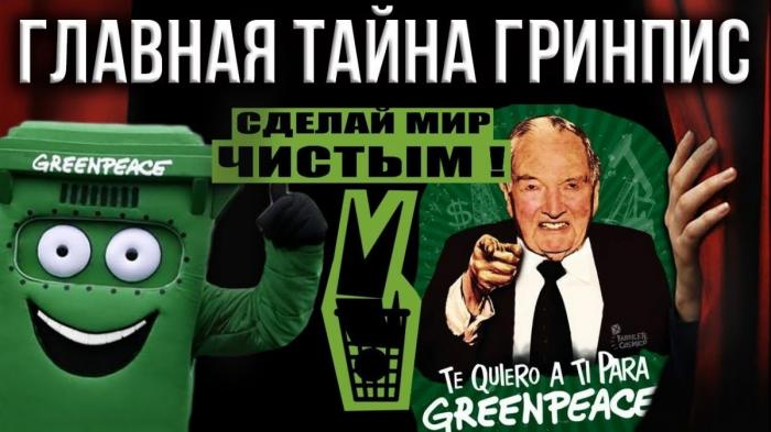 Гринпис. Что скрывается под зелёной «крышей» этой международной организации?