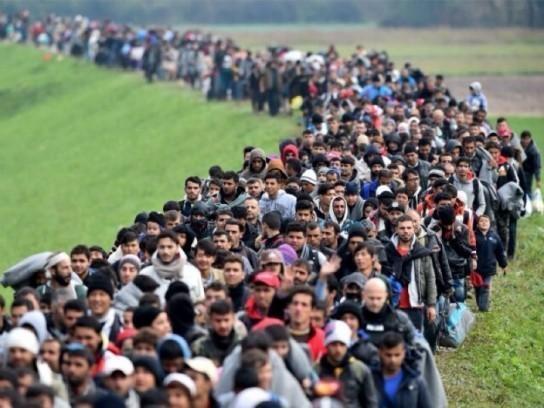 Венгрия бьет тревогу: Европу разрушают, оккупировавшие её исламистские мигранты