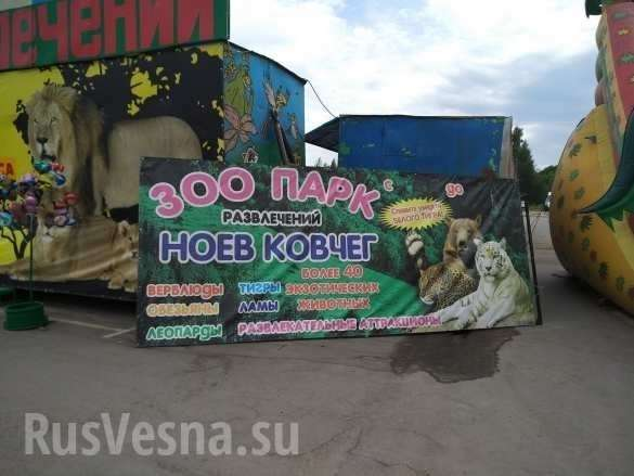Лагерь смерти для животных: приехавший в Рязань передвижной зоопарк шокировал всех | Русская весна