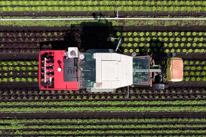 ВРоссии разработали первый вмире промышленный агродроид для сельского хозяйства