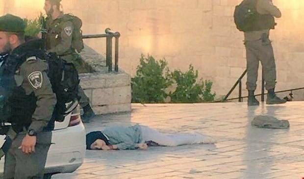«Страдай! Сдохни!» – орали вооружённые евреи на 15-летнюю девочку, прошитую пулями