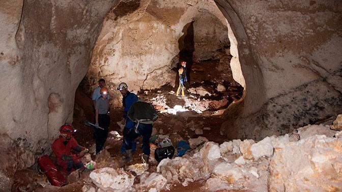 В Крыму обнаружили километровую пещеру с останками мамонта и мамонтёнка