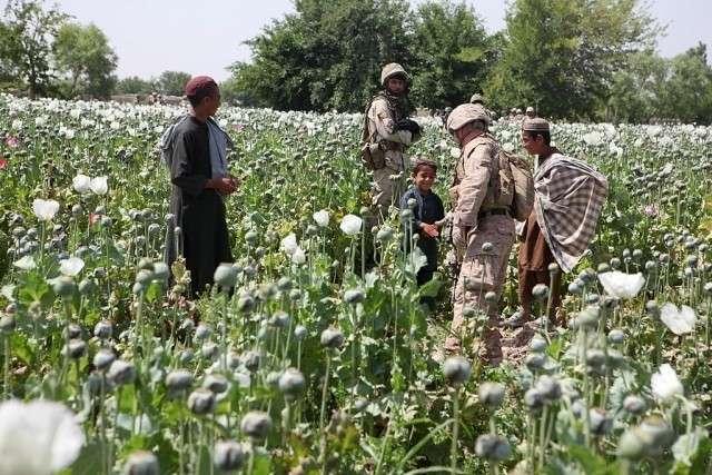 Боевики США из Афгана рвутся в Туркмению, массово убивая военных