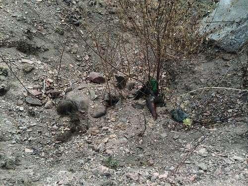 О преступлениях украинских карателей: от неконвенционного оружия до торговли органами