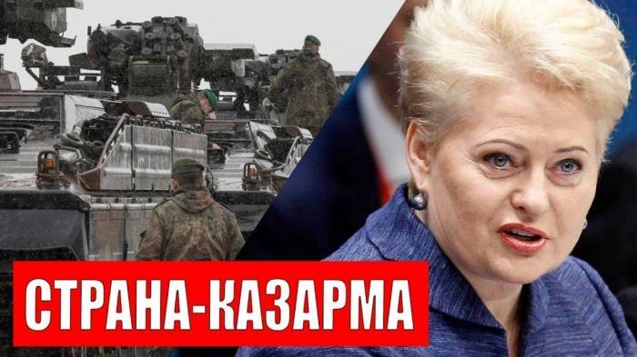 Литва собралась на войну с Россией и уготовила себе роль казармы НАТО