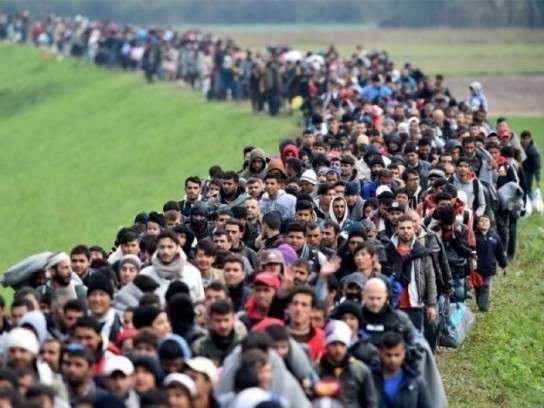 Украину атакуют нелегальные беженцы из Европы