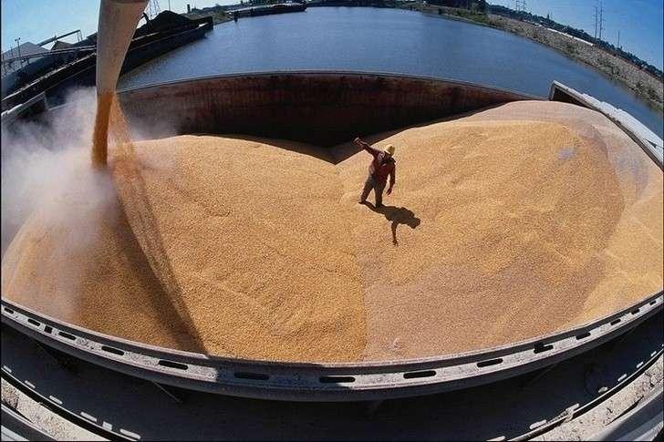 Экспорт зерна изРоссии виюле вырос на79%