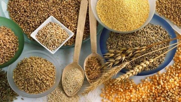 Кого Россия кормит зерном на мировом рынке?