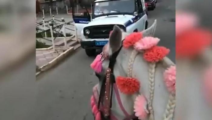 Полицаи звереют или у них приказ такой есть?