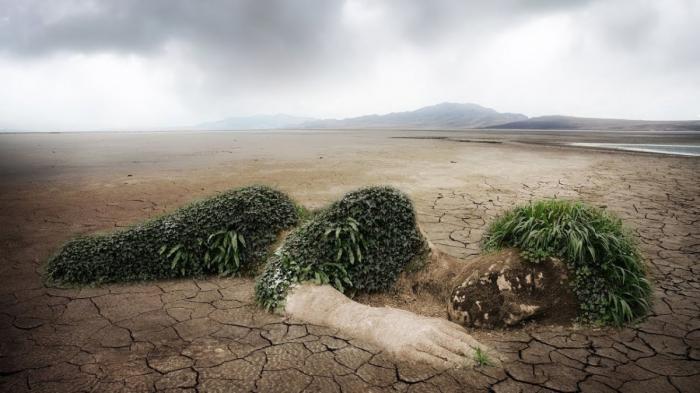 Экологический след: смотрите на природные ресурсы, как на деньги на своём банковском счёте