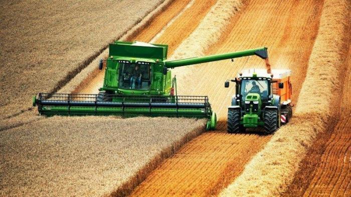 Почему русские аграрии намного лучше и эффективнее западных?