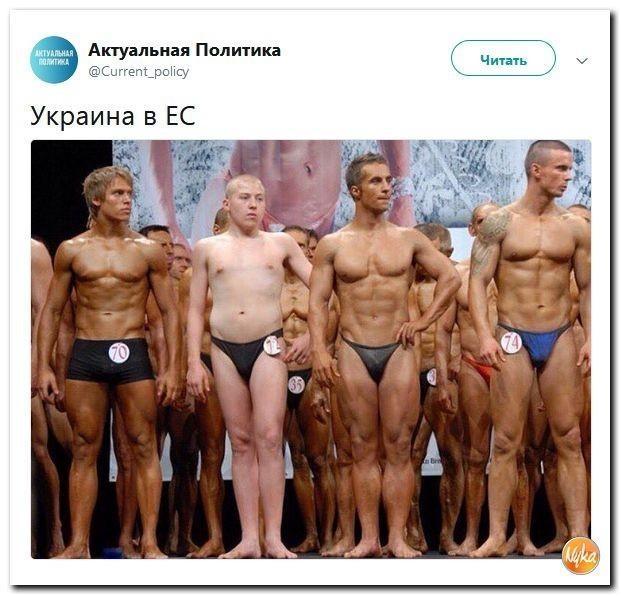 Юмор помогает нам пережить смуту: Украина в ЕС? Не в коня корм!