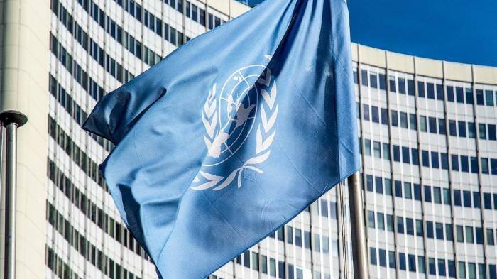 ООН уличила украинских карателей в военных преступлениях на Донбассе