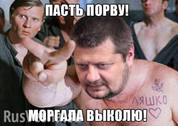 «Не ходи нагей-парады, животное!» — Мосийчук получил пошеевпрямом эфире (ВИДЕО)   Русская весна