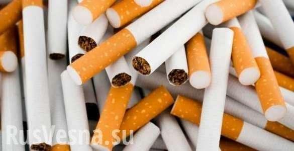 Рынок табачного яда в России рухнет на 30% | Русская весна