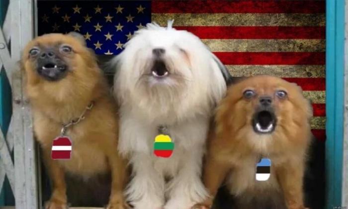 Россия научилась извлекать выгоду из русофобии прибалтов