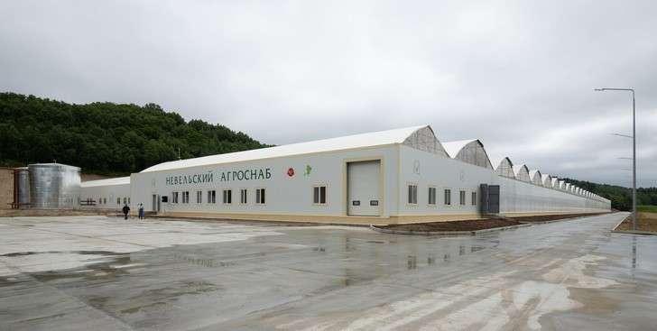ВНевельском районе Сахалинской области открыли новый тепличный комплекс