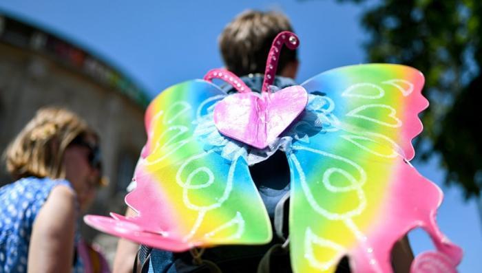 Мученик ЛГБТ-пропаганды. Мать принесла в жертву девятилетнего гея