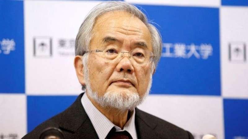 Полиция Японии пыталась скрыть причину самоубийства ведущего инженера компании Panasonic