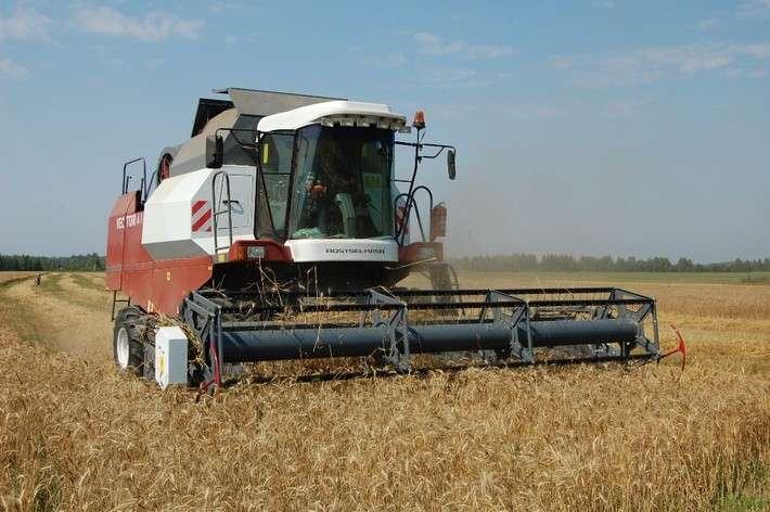 Россия натреть увеличила экспорт зерна