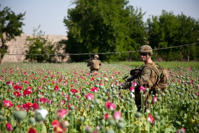 США потратили на операции в Афганистане, Ираке и Сирии более $1,5 трлн