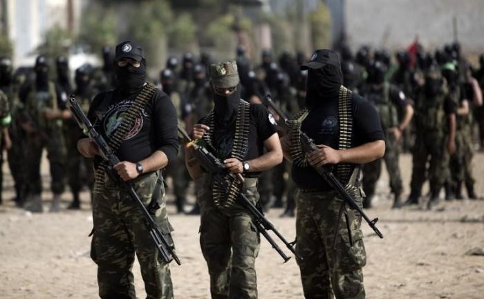 Власть Нидерландов поймали на финансировании террористов в Сирии