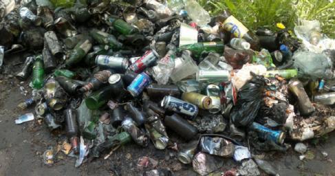 Президент Эстонии попиарилась вместе с мусором на Украине