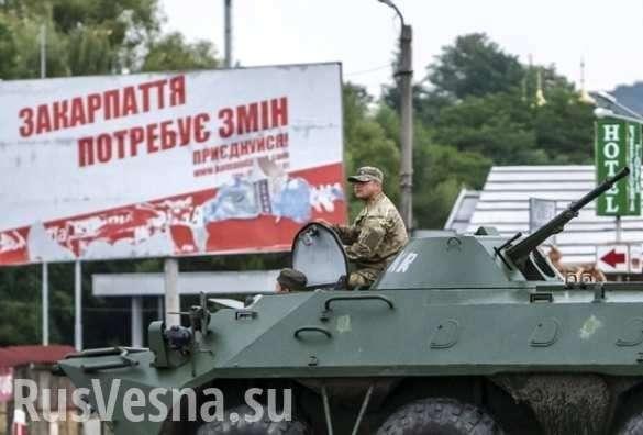 Закарпатье: начались зачистки по типу Донбасса | Русская весна