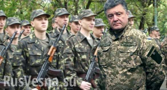 Отчёт Порошенко -директора корпорации «Антироссия» | Русская весна