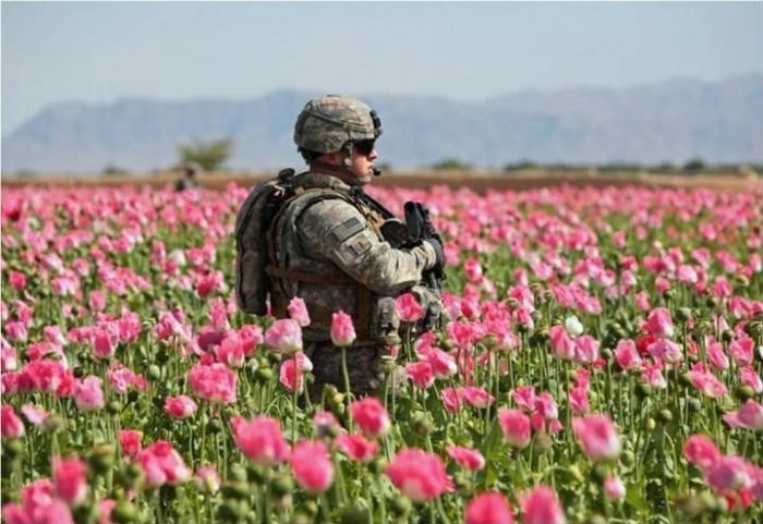 Афганистан. Опиум – оружие геноцида в руках Мирового Правительства