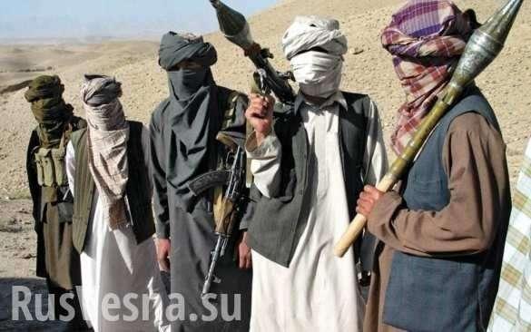 Афганистан. США проигрывают войну и обвиняют Россию в поддержке талибов | Русская весна