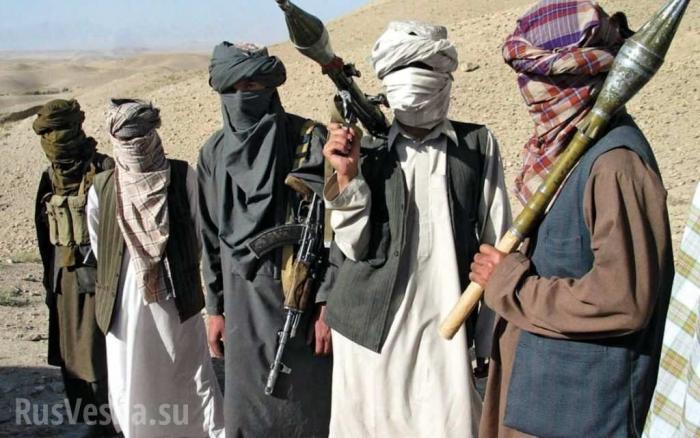 Афганистан. США проигрывают войну и обвиняют Россию в поддержке талибов