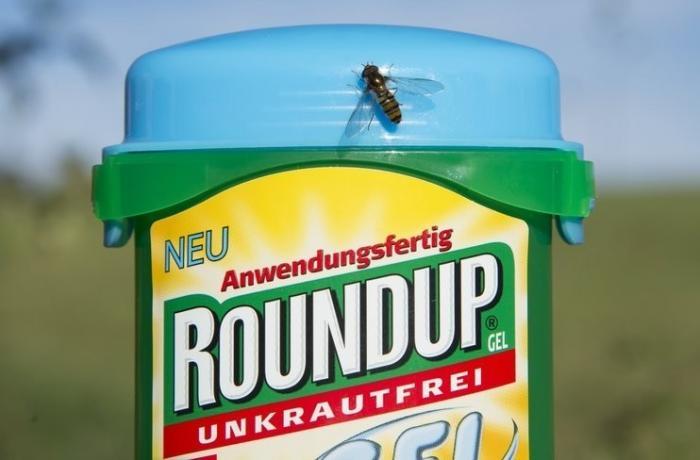 Глифосат от компании Монсанто массово убивает пчёл по всему миру