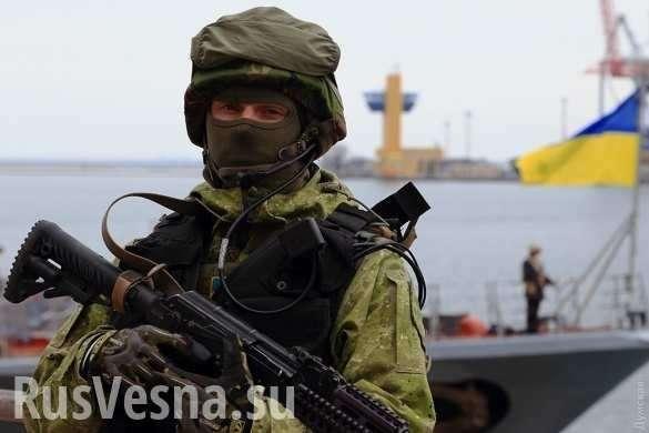 Скандал: Украинский ведущий приравнял «ветеранов АТО» кубийцам (ВИДЕО) | Русская весна