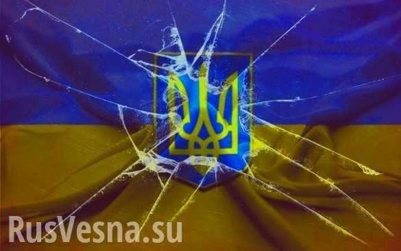 Распад Украины: Венгрия открывает «второй фронт» для Донбасса | Русская весна