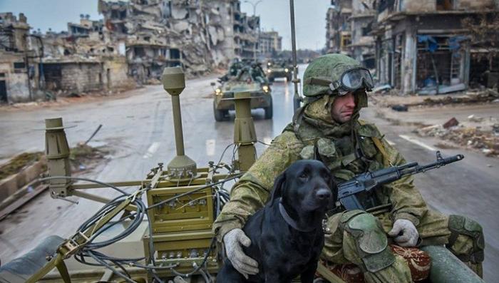 Данные о гибели российских военных в Сирии за три года операции