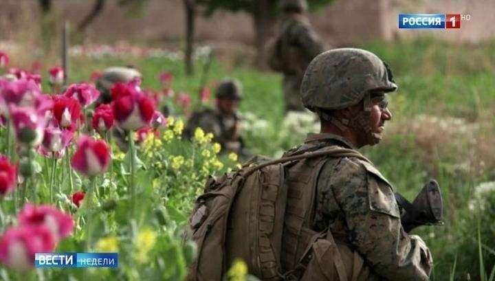 США уничтожают Афганистан ради многомиллиардной прибыли от наркоторговли