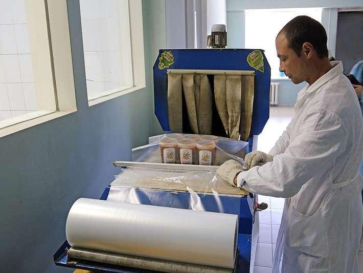 Сделано вРоссии: как перерабатывают сибирские дикоросы